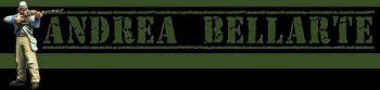 banner-blog-bellarte-03